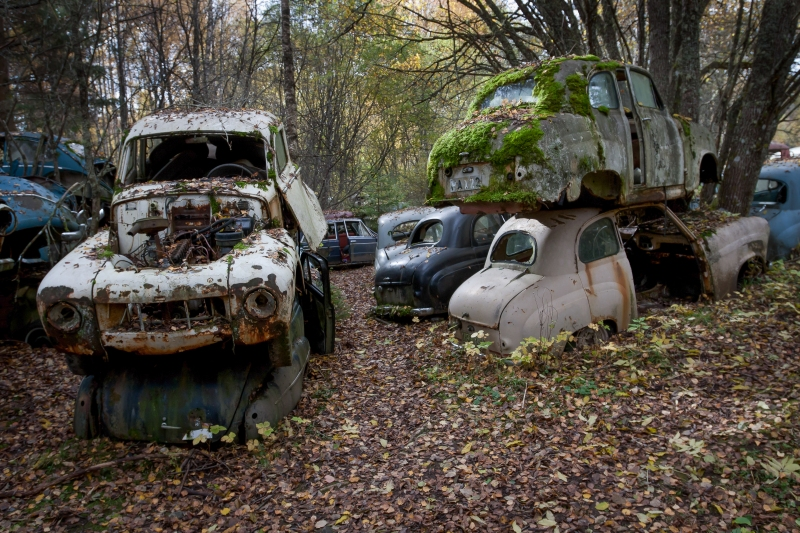 Bilkirkegården på Båstnäs består av mellom 600 og 700 biler.